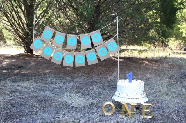 Winston's 1st Birthday Pawty | Lovely Little Obsessions | first birthday party cake and happy birthday banner